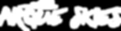 ArqueSkies_Logo_1.png