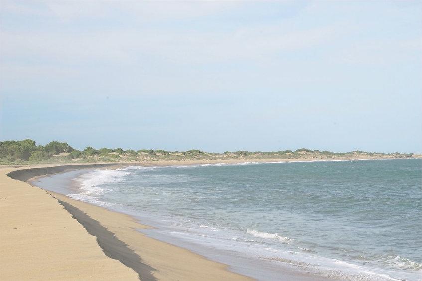 Beach-in-Yala-National-Park-in-Sri-Lanka