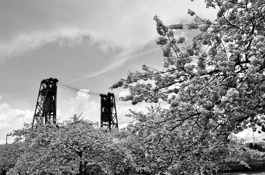 blossoms bridge.jpg