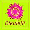 Logo-Dieulefit-300x300.jpg