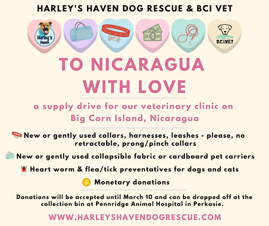 To Nicaragua with Love fb (3).png