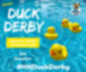 Copy of duck cover pool.png