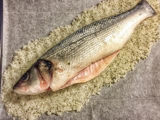 דג במלח - עופר מהולל