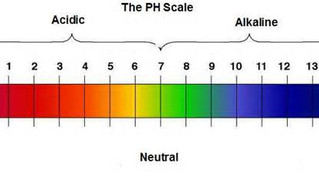 pH and Pool Water