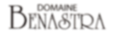 Logo_transparent_Benastra.png