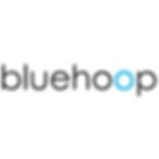 bluehoop logo.png