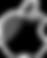 apple_logo-512 (1).png