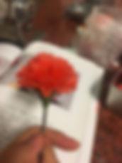 蜂蠟花-4.jpg