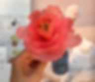 牡丹蜂蠟花-1.jpg
