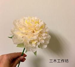 姚黃牡丹.jpg