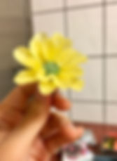 蜂蠟花-5.jpg