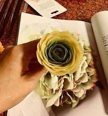 蜂蠟花-2.jpg