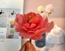 牡丹蜂蠟花-2.jpg