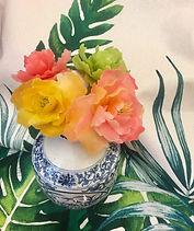 牡丹蜂蠟花-4.jpg