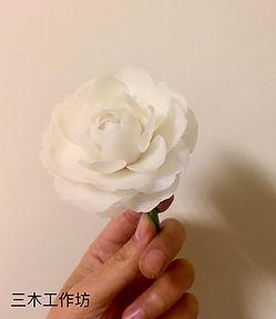 白寶塔山茶花-1.jpg