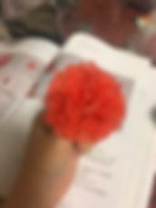 蜂蠟花-3.jpg