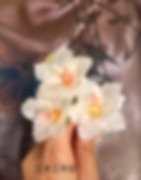 油桐花-1.jpg