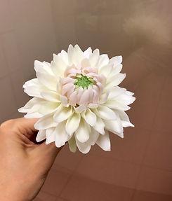 大麗花-2.jpg