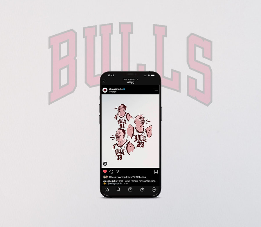 Visla Graphic - Chicago Bulls - Illustra