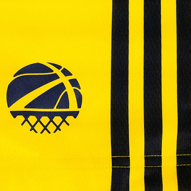 Visla Graphic - Sweden Basketball - adid