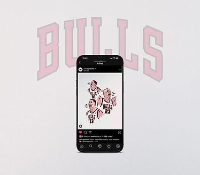 VISLA x Bulls Post 2.jpg