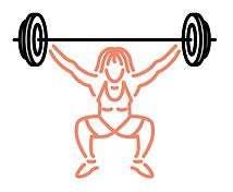 visla graphic - barbell club gym - logo