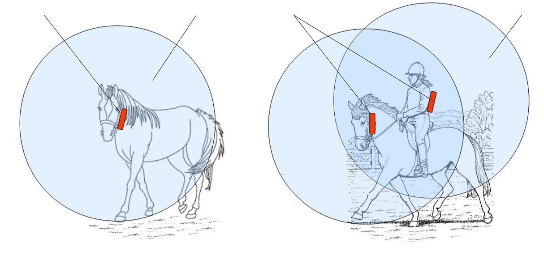 Pferde 1&2.png