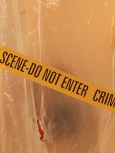 """Crime Scene"""