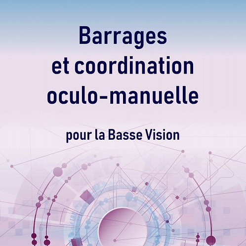 Barrages et coordination oculo-manuelle pour la Basse Vision 2