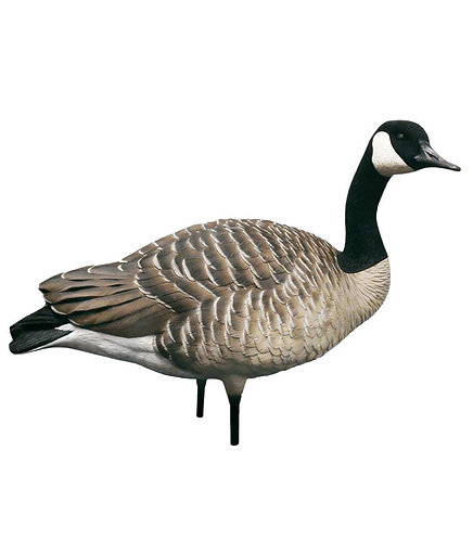 Sentry Goose Decoys*