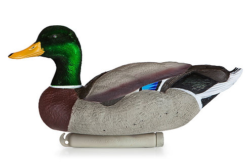 Duck Decoys*