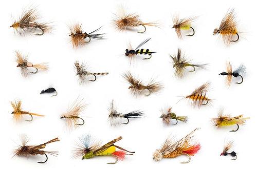 Flies