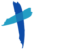 DHF - NEW logo (brighter colors white).p