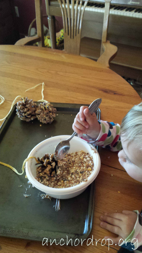 dipping pinecone in bowl
