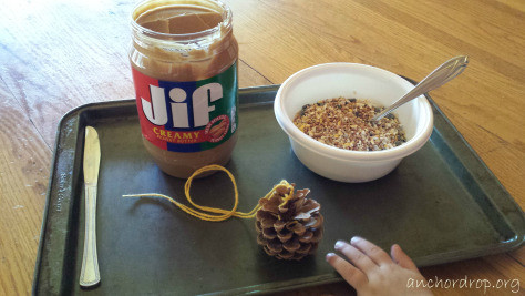 jar of peanut butter bowl of bird seed and one pinecone
