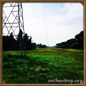 field with power lines