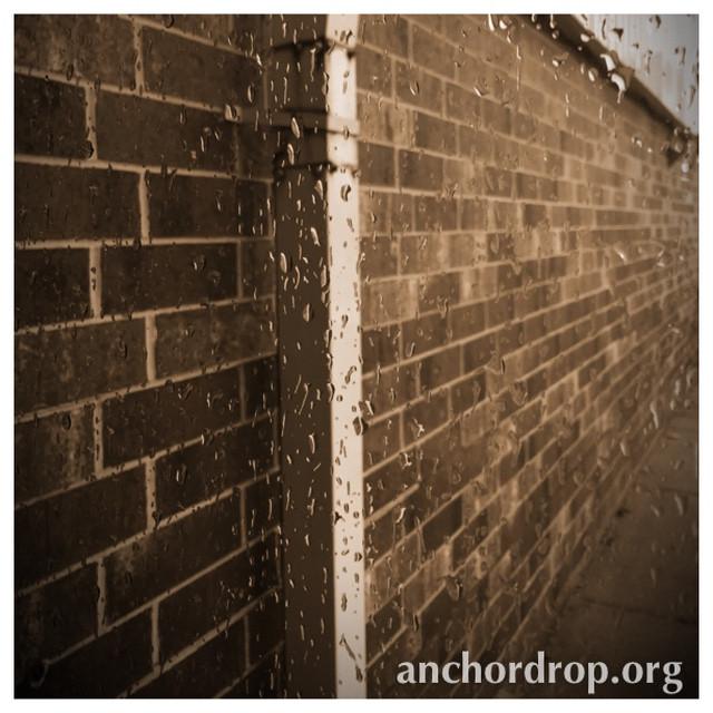 Brick wall in the rain