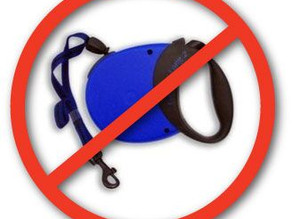 5 Reasons Retractable Leashes Are Actually Made By Satan.