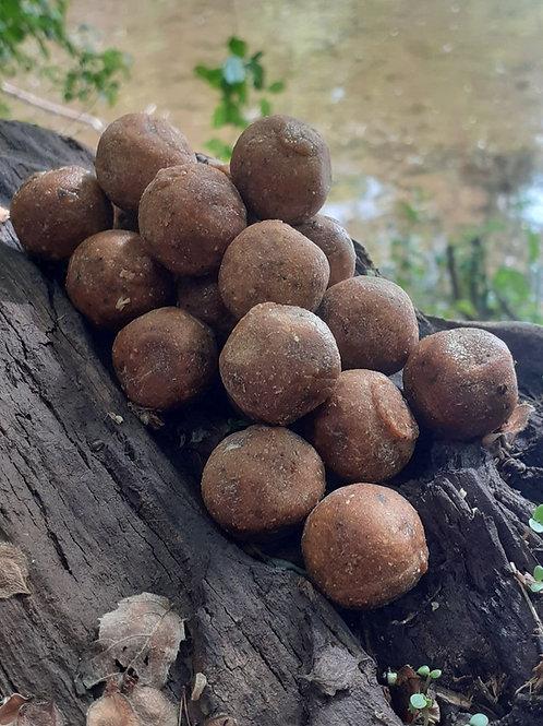 Poisson Epices Rouges (5 kg)