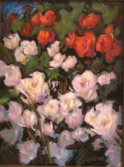 Cedeno_Flowers_rose000