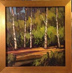 Cedeno_Trees_Birch