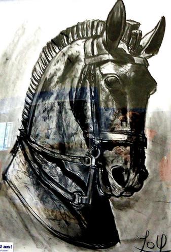 Tête de Cheval - Fusain - 50x65 cm
