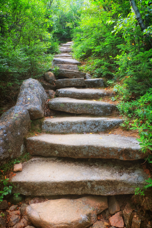 Stairs To Cadillac Mountain