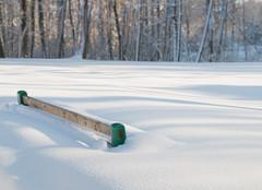 Peaceful Winter Snow