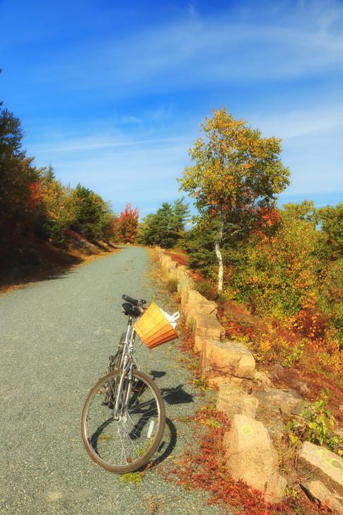 Brilliant Day For A Bike Ride