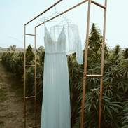 CannabisShoot-36.jpg