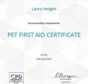 Pet First Aid Cert.jpg