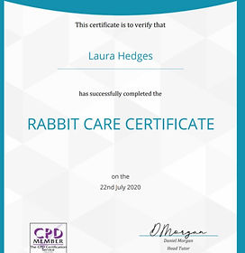 Rabbit Care Certificate.jpg