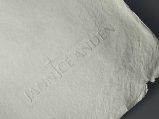 jannice logo.png