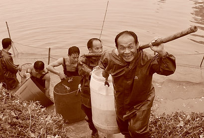 Fish Farm Workers.